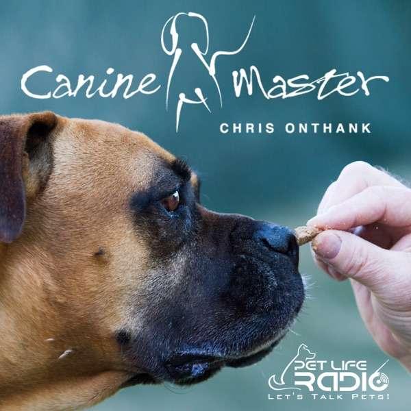 Canine Master – Dog training and behavior on Pet Life Radio (PetLifeRadio.com)