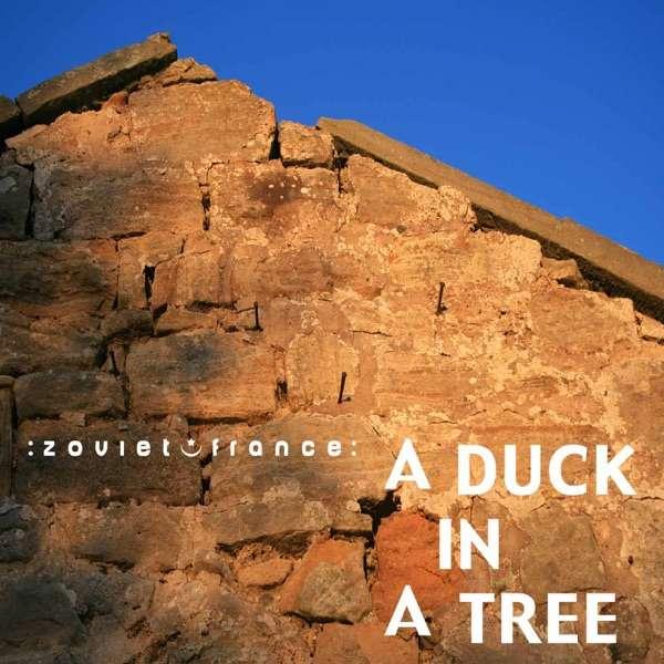A Duck in a Tree