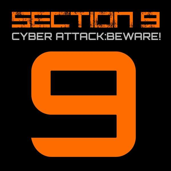 SECTION 9 Cyber Security