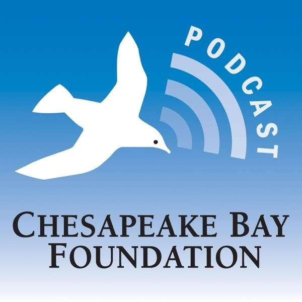 Turning the Tide, Saving the Chesapeake Bay