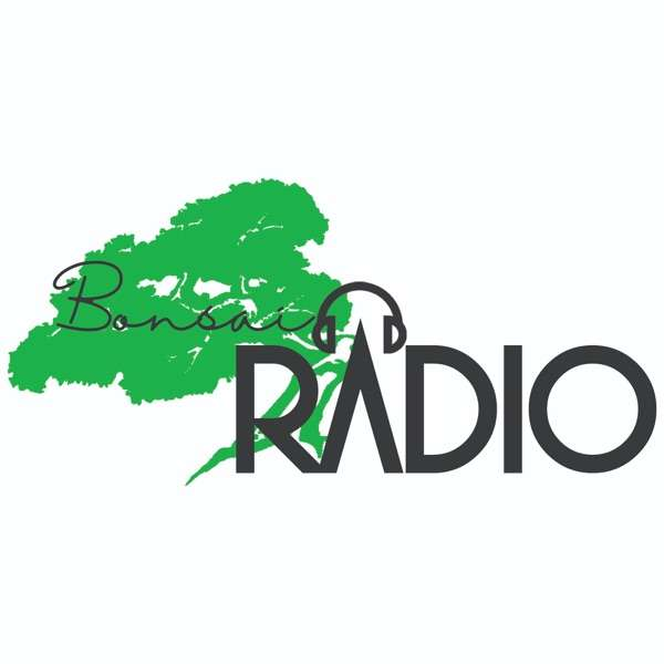 Bonsai Radio