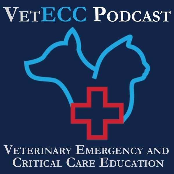 The VetECC Podcast