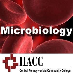 Immunology / Microbiology – Dr. Earl Beyer