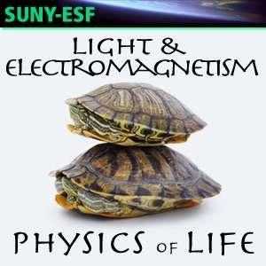 Light & Electromagnetism – Physics of Life – Dr. Scott Turner, Professor, Department of Environmental & Forest Biology, SUNY-ESF