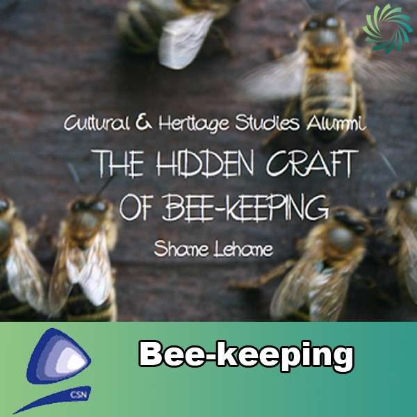 Beekeeping – Coláiste Stiofáin Naofa