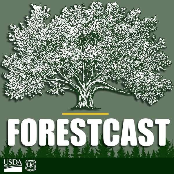 Forestcast