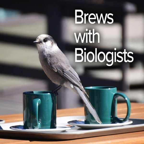 Brews with Biologists
