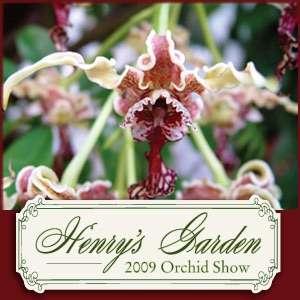 Missouri Botanical Garden Orchid Show 2009