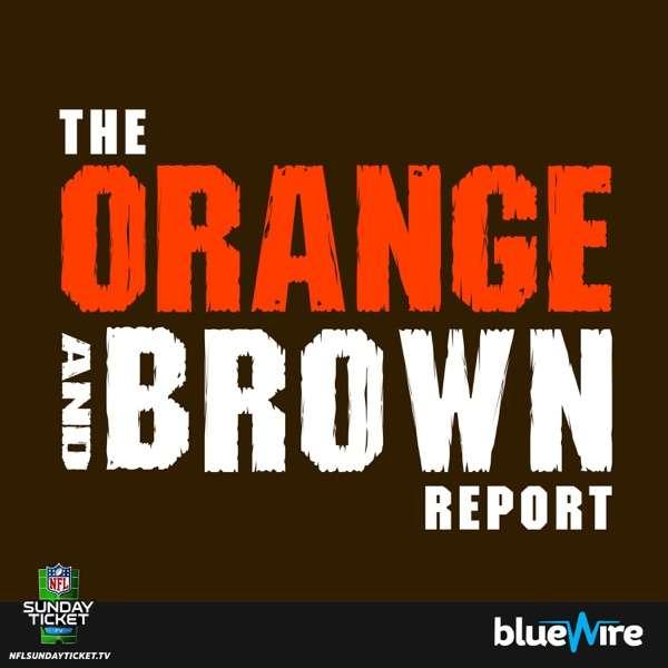 Orange and Brown Report