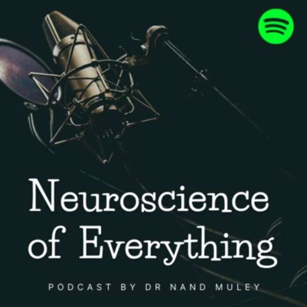 Neuroscience of Everything