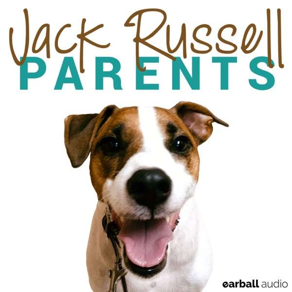 Jack Russell Parents