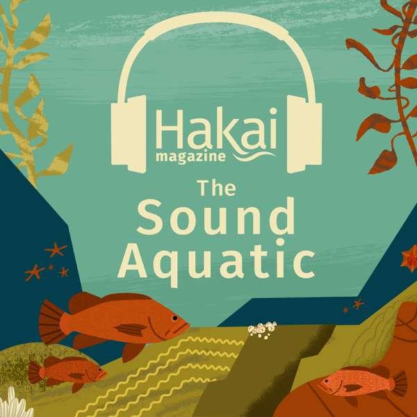 The Sound Aquatic