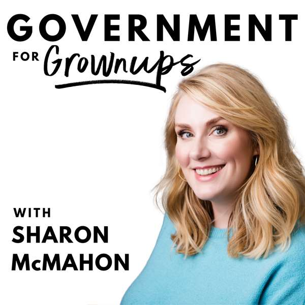 Government for Grownups