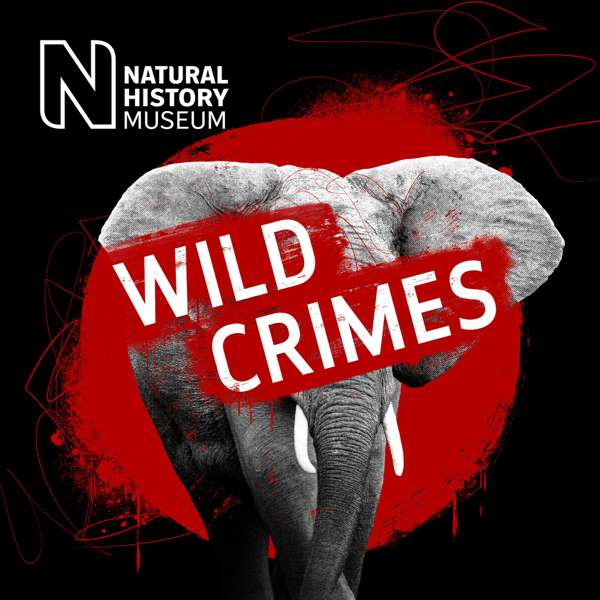 Wild Crimes – The Natural History Museum, London