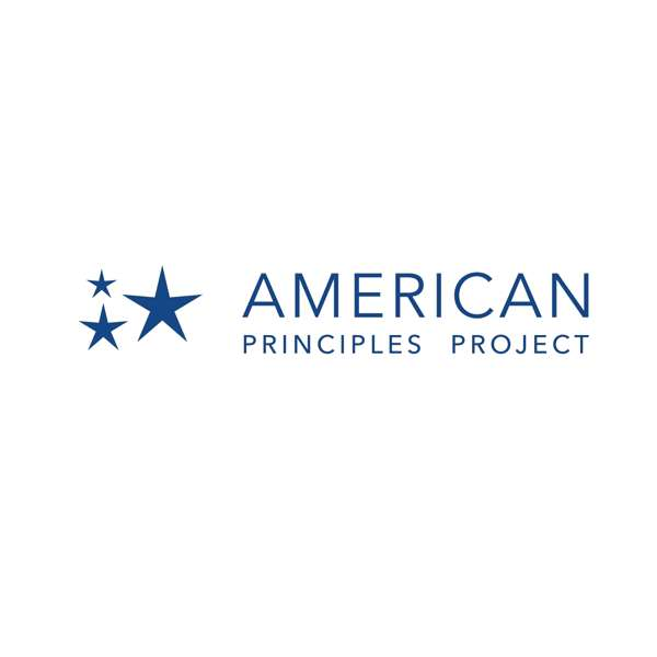 The American Principles Project